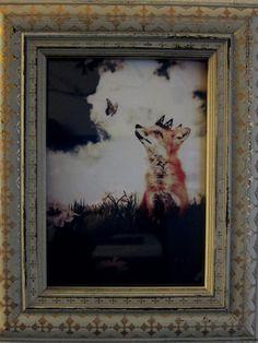 Fox Print in Woodland Nursery