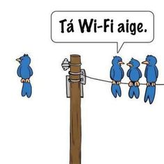 I wish all birds had a wi-fi chip- mine would be way faster. Wi Fi, Irish Quotes, Irish Memes, Irish Humor, 6 Class, Funny One Liners, Irish Language, Scottish Gaelic, Book Projects