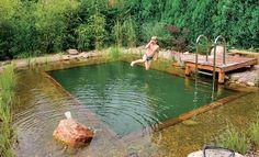 Wer genug Platz im #Garten hat, könnte sich für die heißen Sommertage einen #Schwimmteich bauen. Vorteil gegenüber einem Pool: Er wird nicht mit Chlor sondern auf natürliche Weise gereinigt.