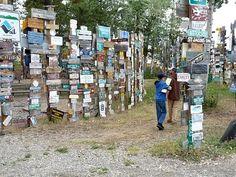 PCS: Watson Lake, Yukon Territory - Famous Signpost Forest, Buffalo, Bear