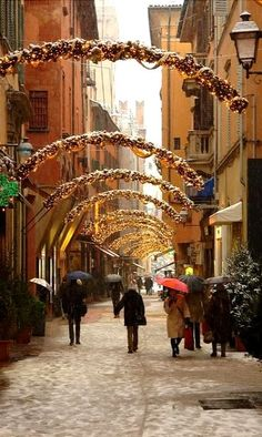 Bologna - Holiday Streets, Italy (by earthmagnified on Flickr) Emilia Romagna