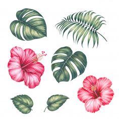 Hibiscus Flower Drawing, Hibiscus Flowers, Tropical Flowers, Watercolor Flowers, Flower Art, Palm Tree Drawing, Leaf Drawing, Palm Tree Sketch, Tropical Flower Tattoos