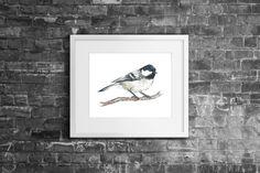 8x10 'Coal Tit' Bird Watercolour Fine Art by FrancescaBrittonART