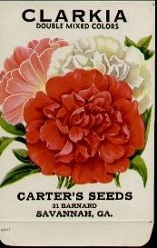 vintage botanical graphics: vintage flower seed packets