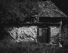 "Check out new work on my @Behance portfolio: ""Abandoned Living into the wood""…"
