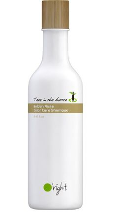 O'right Golden Rose Tree in the bottle