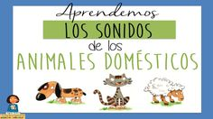 Aprendemos los sonidos de los animales_Discriminación sonidos Dbz Gt, Music Classroom, Musicals, Sons, Knowledge, Comics, Learning, School, Videos