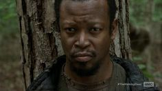 BOB-  The Walking Dead Season 4 Episode 13 | The Walking Dead Season 4 Episode 13 Review: Alone