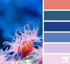 { underwater hues } | image via: @rotblaugelb