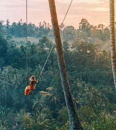 "5,286 Likes, 118 Comments - L*Space by Monica Wise (@lspaceswim) on Instagram: ""This ain't no kiddie swing @gypsea_lust #LetGo #Bali #SwingGoals"""