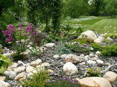 rock garden   Rock Garden Ideas   Alpine Garden Pictures Pictures of rock gardens ...