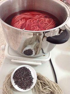 Tintes naturales. Cochinilla de Lanzarote. Natural dyes. Cochineal