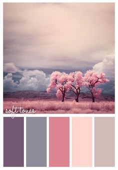 soft tones #pinks #calm #girly #color #scheme