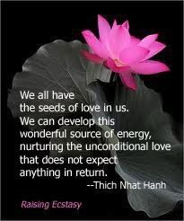 The source of love within us blossoms beyond expectations. Not a soul (not even ours) can dictate our direction of growth. When it comes to developing our capacity to love, we are the only authority: only we can decide to return to the whisper within and trust her Word, for she Knows the way of the Heart. When we follow our breath to the origin of being we find the living silence that nurses truth into becoming without coercion.