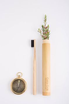 Bamboo Toothbrush Travel Case The Natural Wooden Holder for