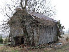 Tobacco Barn Near Camptown, Va