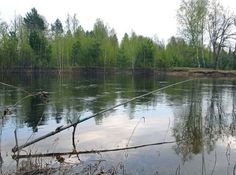 Ловим рыбу на полудонку
