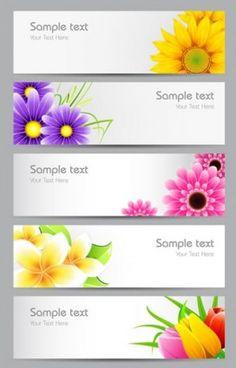 chrysanthemum banner banner vector