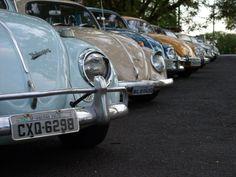VW Beetle meeting.