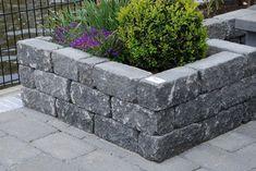 Backyard Inspiration, Plants, Garden Beds, Backyard Garden, Cement Garden, Diy Garden, Garden Planters, Garden, Garden Projects
