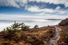 Windy day on the coastal trail at Gaff Point, Nova Scotia. Big waves and fast skies while enjoying a picnic. Love the conservation land protecting this stretch of coastline. Lots of work being put into the trails!