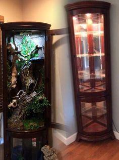 37 Best Diy Chameleon Enclosure Vivarium Images Chameleon