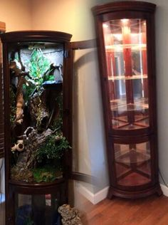 Reptile furniture cage curio cabinet | This would be great for a chameleon!