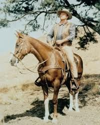 """John Wayne  from movie """"Chisum"""" on Dollor. DOLLOR"""" (also referred to as """"Ol' Dollor""""). The name """"Dollor"""" is apparantly taken from the Spanish word """"Dolor"""", meaning """"pain"""" or """"sorrow"""""""