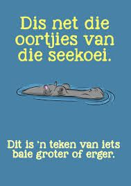 Related image Classroom Themes, Classroom Activities, Wise Quotes, Qoutes, Library Quotes, Afrikaanse Quotes, My Land, Idioms, Teaching Tips