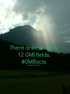 There are 12 GMI fields