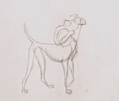 Another type of design, with a larger muzzle and a very small pelvis area. The size of Pongo's muzzle became the subject of a debate between Milt and story man Bill Peet.