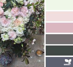 { color spring } image via: @clangart