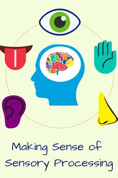 We asked Dr. Jamie Chaves, a pediatric occupational therapist at The Center for Connection in Pasadena, California, to help us make sense of sensory processing. Sensory System, Pasadena California, Occupational Therapist, Blog Topics, Sensory Processing, Pediatrics, Mindset, Connection, Mindfulness