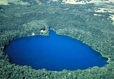 QUEENSLAND: Crater Lakes National Park comprises of two separate sections—Lake Barrine and Lake Eacham. Both sections protect clear, blue crater lakes surrounded by cool rainforest.   (Google Image Result for http://rainbowfish.angfaqld.org.au/Lake_Eacham.jpg)