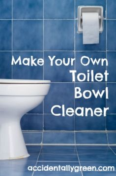Make Your Own Toilet Bowl Cleaner - Accidentally Green