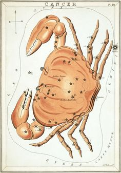 Cancer as depicted in Urania's Mirror, a set of constellation cards published in London c.1825