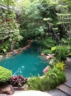 A swimming pool is one of the favorite places to refresh our mind. It is no wonder that people will seek the resort with modern and luxurious swimming pool to spend their vacation. A nice swimming pool design will require . Natural Swimming Ponds, Swimming Pool Photos, Indoor Swimming Pools, Swimming Pools Backyard, Ponds Backyard, Swimming Pool Designs, Pool Landscaping, Lap Pools, Pool Decks