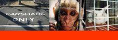 CAR SHARING - CORTEO #FERRARA #NOstabularioFerrara In preparazione al corteo contro la sperimentazione animale e contro lo stabulario dell'Università di Ferrara che si terrà Sabato 11 Ottobre alle 14:30, chiunque abbia bisogno di supporto nell'organizzazione di pullman o auto condivise può appoggiarsi a questa pagina https://www.facebook.com/events/707013746037856/
