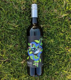 New producers of rare varietal wines in Australia. These wines will be included in the next edition of Rare Ozzies book Antipasto Plate, Clare Valley, Wine Varietals, Wine Education, Wine Reviews, Wine Making, Bago, Native Plants, Wines