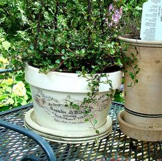 This project was sent in by a sweet reader named Bernadette. Bernadette created these beautiful French Chic Flower pots for her garden! Aren't they lovely?! To make these, she purchased some Terra Cotta pots and spray painted them. After they tried she took used Liquitex to transfer the images onto the pots. Since I wasn't...Read More »