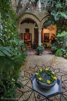 Cordoba, Spain I want a house with an inner courtyard.