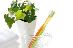 helecho baño Feng Shui, Minimalist Home, Barware, Flora, Plants, Sim, Alice, Gardening, Patio