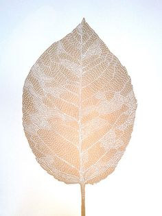 Monika Petersen - Leaf Gold