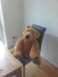 Found at Grant Road, London on 02 Mar. 2016 by Edo: Found this cutie in Battersea! Off Grant/ Thomas Baines Road. If his owners don't want him he& Lost & Found, Pet Toys, Teddy Bear, London, Big Ben London, Teddybear