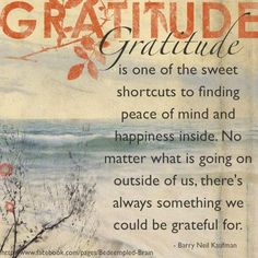 quotations on gratitude gratitude is one of the sweet shortcuts to finding peace of mind and happiness inside no matter what is going on outside of us always something we gratitude quotes thanksgiving Practice Gratitude, Attitude Of Gratitude, Gratitude Quotes, Positive Quotes, Grateful Quotes, Showing Gratitude, Positive Affirmations, Words Of Gratitude, Gratitude Jar