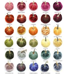 Original Silk Velvet Pumpkins-Velvet pumpkins with real stems Velvet Acorn, Velvet Pumpkins, Fabric Pumpkins, Fall Pumpkins, Plastic Pumpkins, Diy Pumpkin, Pumpkin Crafts, Autumn Crafts, Holiday Crafts