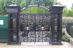 Alnwick Poison Garden, England | 9 Places You Never Want To Go On A Vacation… Oh but I do want to go here!
