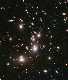 Hubble Images This long-exposure image taken by NASA's Hubble Space Telescope includes some of the earliest galaxies ever detected. - Four galaxies discovered by the Hubble telescope date to the early universe, but are vastly more bright than expected. Telescope Images, Hubble Space Telescope, Space And Astronomy, Cosmos, Carina Nebula, Space Photos, Space Images, Nasa Space Pictures, Hubble Pictures