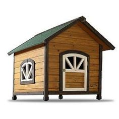 Dog house/duck coop
