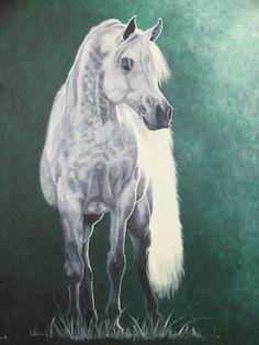 Marleen B. animal art and portraits Paarden